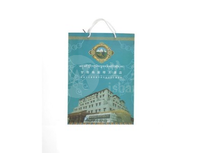 酒店宾馆纸质手提袋01